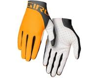 Giro Trixter Gloves (Glaze Yellow/Portaro Grey)