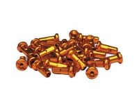 Halo Wheels 14 Gauge Nipples (Gold) (12mm) (Bag of 50)