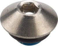 Shimano Alfine SG-S700 Oil Port Bolt (Silver)
