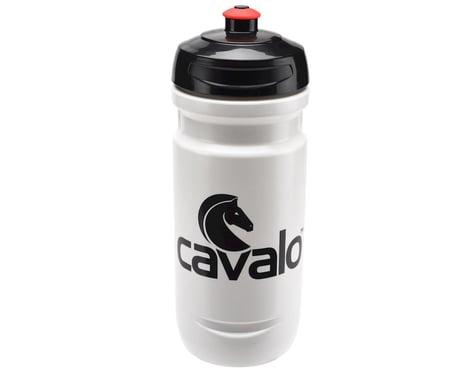 Elite Cavalo Loli 20oz Water Bottle