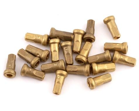 Enve Internal Spoke Nipples (Brass) (10mm) (20 Pack)