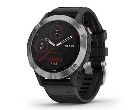 Garmin Fenix 6 (Silver w/ Black Fenix 6 Quick Fit Wristband)